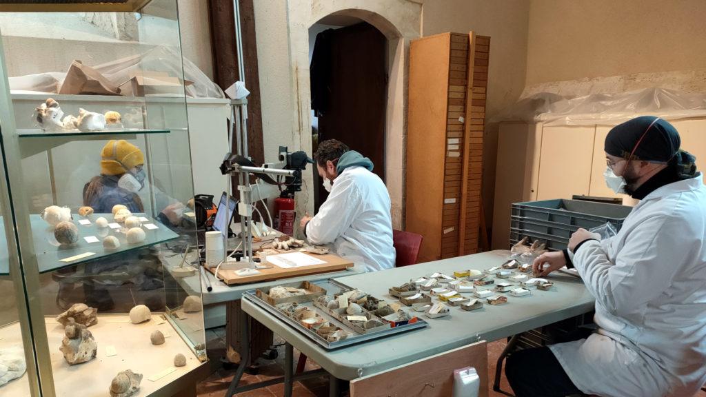 Un chantier des collections à l'église du Mesnil à Lillebonne
