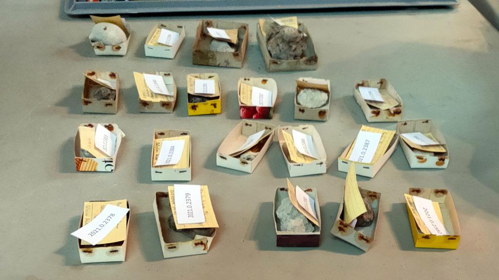 « Des spécimens identifiés, numérotés et classés » ©H. Bordet/HB Conservation